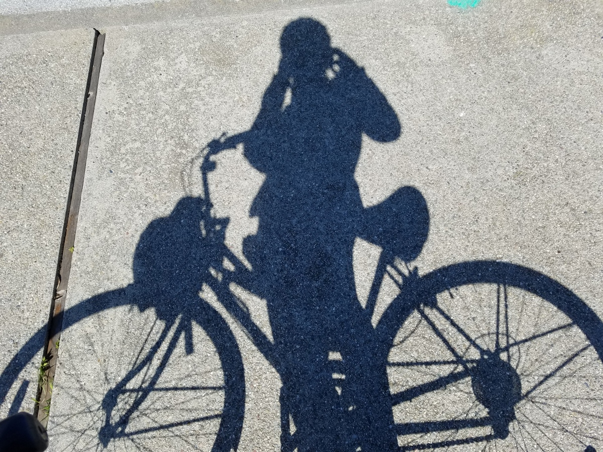 Bike Like Me